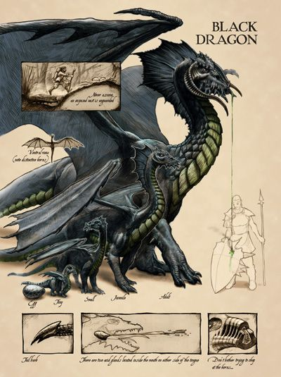 Черные драконы предпочитают селиться в дремучих тропических лесах или на болотах, заваленных буреломом и заросших...